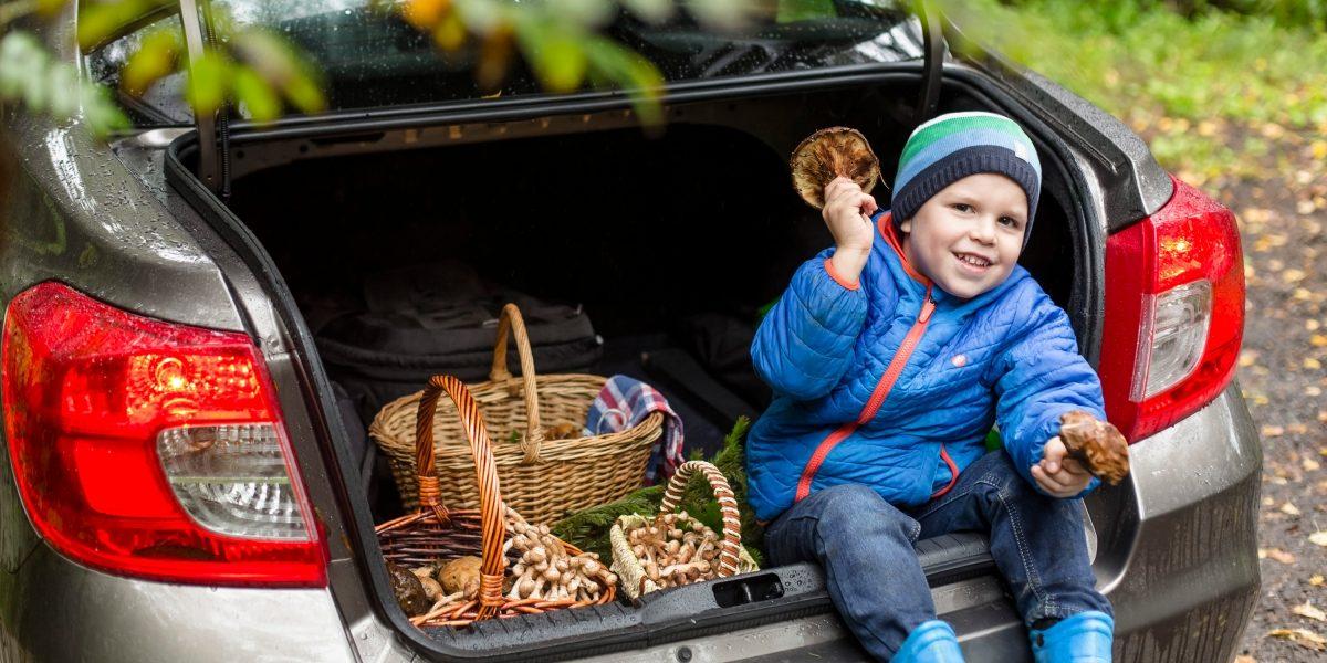 Ребёнок в багажнике автомобиля Datsun.