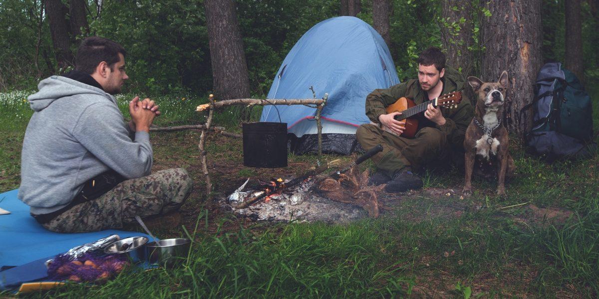 Друзья в лесу с гитарой у костра.